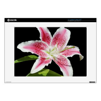 Stargazer Lily Decal For Laptop