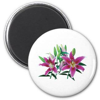 Stargazer Lily Family 2 Inch Round Magnet