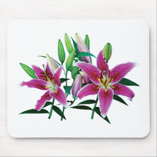 Stargazer Lily Family Mouse Pad