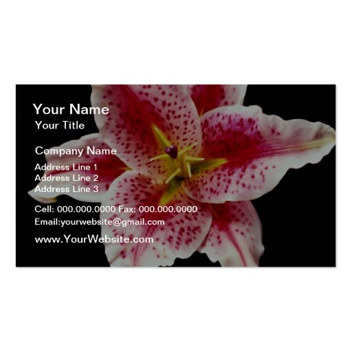 Stargazer lily  flowers Double-Sided standard business cards (Pack of 100)