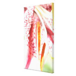 Stargazer Lily Gallery Wrap Canvas