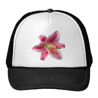 Stargazer Lily Hat