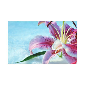 Stargazer Lily in the Snow Canvas Prints