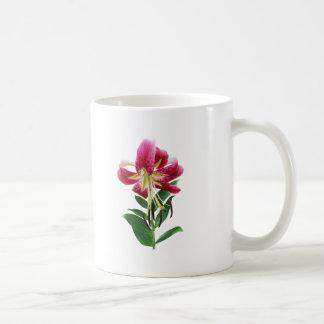 Stargazer Lily Looking Down Coffee Mugs