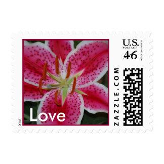 Stargazer Lily Love Postage