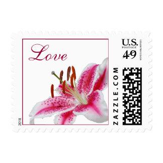 Stargazer Lily Love Stamp