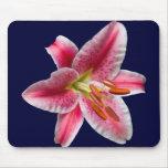 Stargazer Lily Mousepad