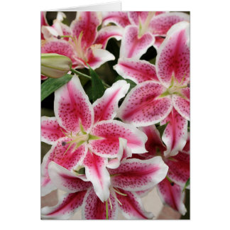 Stargazer Lily Note Card - Blank