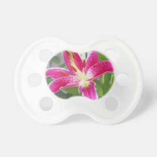 Stargazer Lily Pacifiers