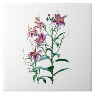 Stargazer Lily Plants Ceramic Tile