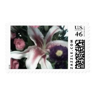 Stargazer Lily Postage Stamp