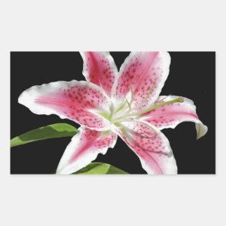 Stargazer Lily Rectangular Sticker