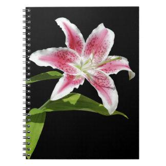 Stargazer Lily Spiral Note Books