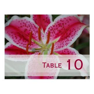 Stargazer Lily Table Number Postcard