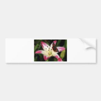 Stargazer Lily With Butterfly Bumper Sticker