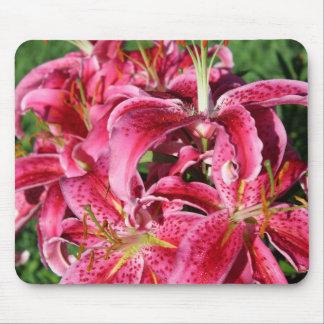 Stargazer Oriental Lilies Mouse Pad