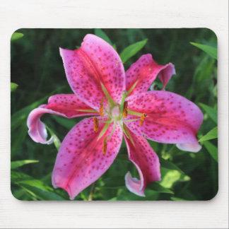 Stargazer Oriental Lily Mouse Pad