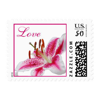 Stargazer Silhouette Love Stamps