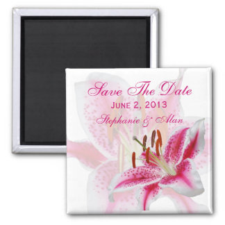 Stargazer Silhouette Save The Date Magnet