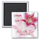 Stargazer Silhouette Save The Date Magnets