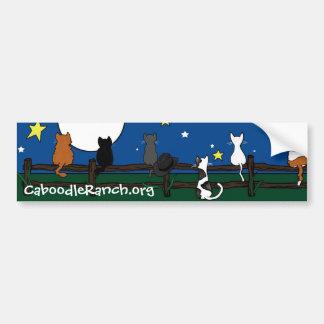 'Stargazing' Bumper Sticker Car Bumper Sticker