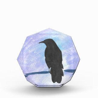 Stargazing Crow Award