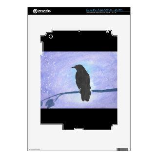 Stargazing Crow iPad 3 Skins