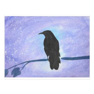 Stargazing Crow Postcard