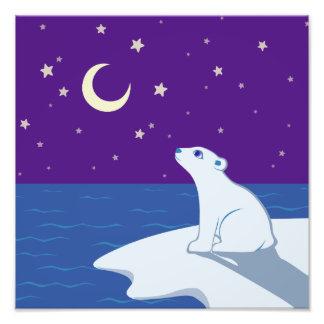 Stargazing Polar Bear Cub Art Photo