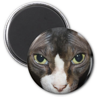 Staring at You 2 Inch Round Magnet