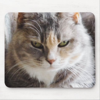 Staring Contest Mouse Pad