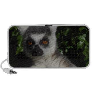 Staring Lemur Portable Speaker