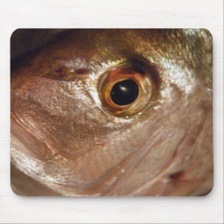 Staring Snapper Mouse Pad