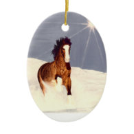 Starlight Run Ornament