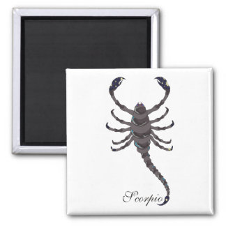 Starlight Scorpio Magnets