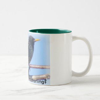 Starling, Are you a star or a starling? Mugs