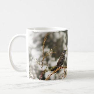 Starling bird in the Snow Coffee Mug