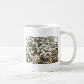Starling bird in the Snow Mugs
