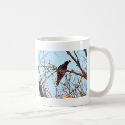 starling en el ocaso taza