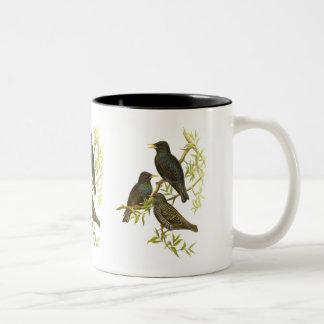 Starling Coffee Mugs