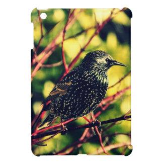 Starling negro iPad mini carcasa