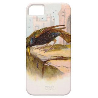 Starling Restored iPhone SE/5/5s Case
