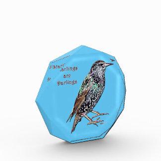 Starlings Are Darlings Acrylic Award