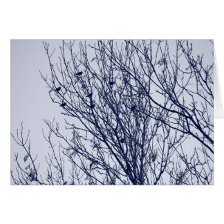 Starlings in a Tree Card