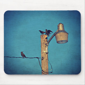 Starlings Mouse Pad
