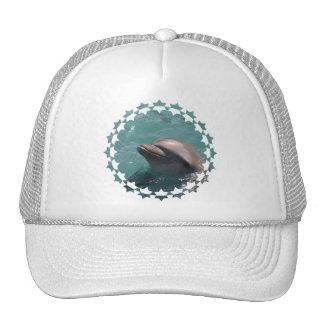 Starring a Dolphin Baseball Hat