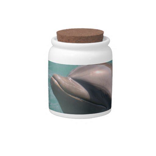 Starring a Dolphin Candy Jar