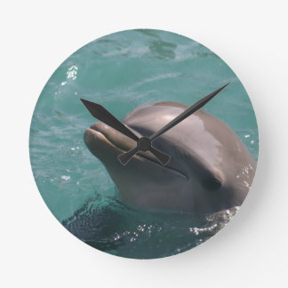 Starring a Dolphin Clock