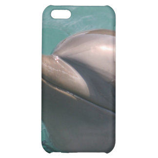 Starring a Dolphin iPhone Case iPhone 5C Covers