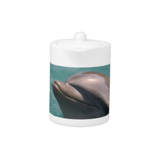 Starring a Dolphin Teapot